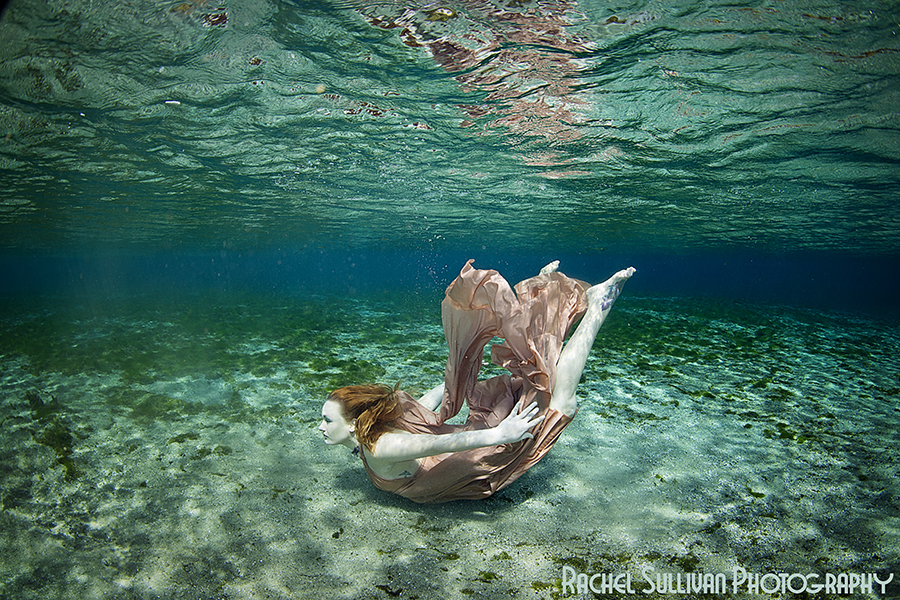 Underwater photography r sullivan photography underwater photography publicscrutiny Image collections